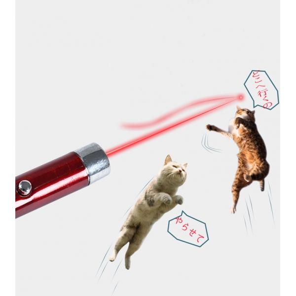 猫レーザーポインター